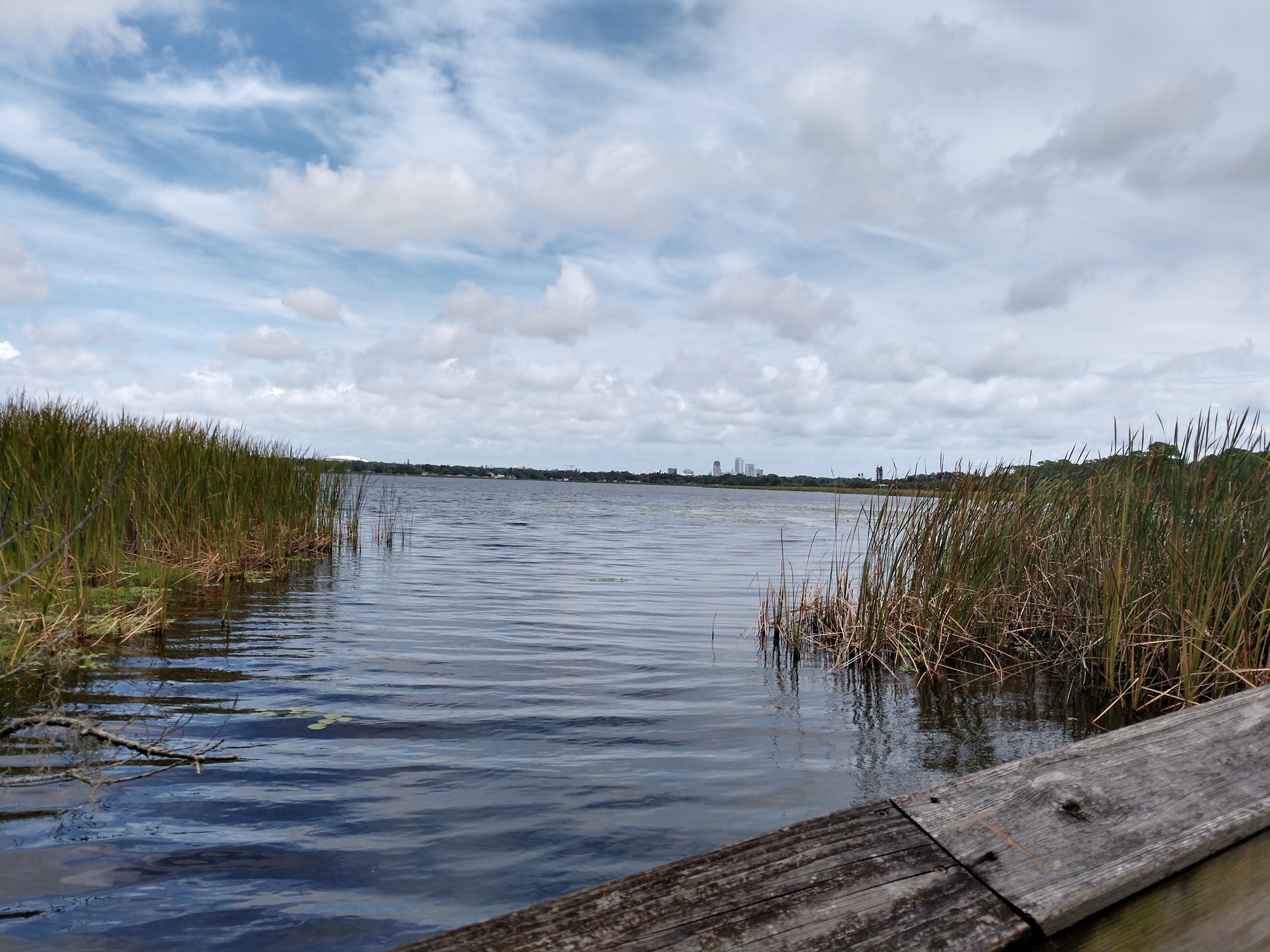 free things to do in st. pete - boyd hill nature center