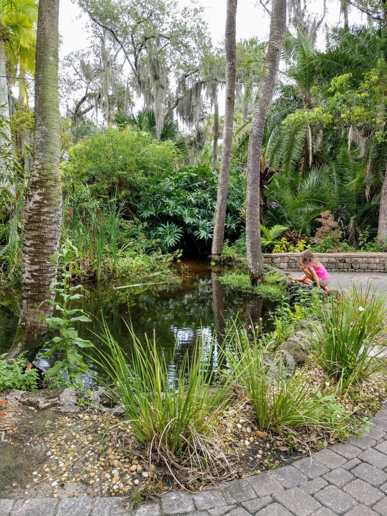 FIT Botanical Garden pond and Courtyard