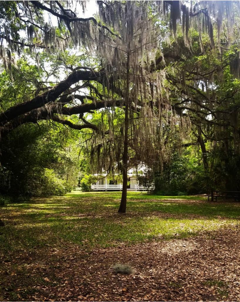 free things to do in mandarin - Walter Jones Historic Park